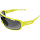 POC DO Blade Glasses unobtanium yellow